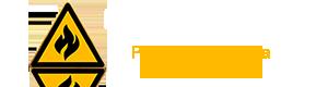 Flame Services Logo